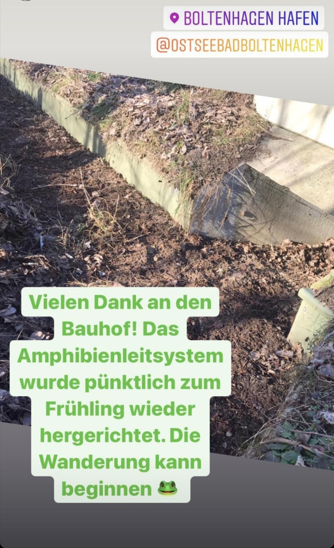 An der Weißen Wiek wohnt auch die Kreuzkröte. Danke an den Bauhof, für die Frühlingspflege des Amphibienleitsystems