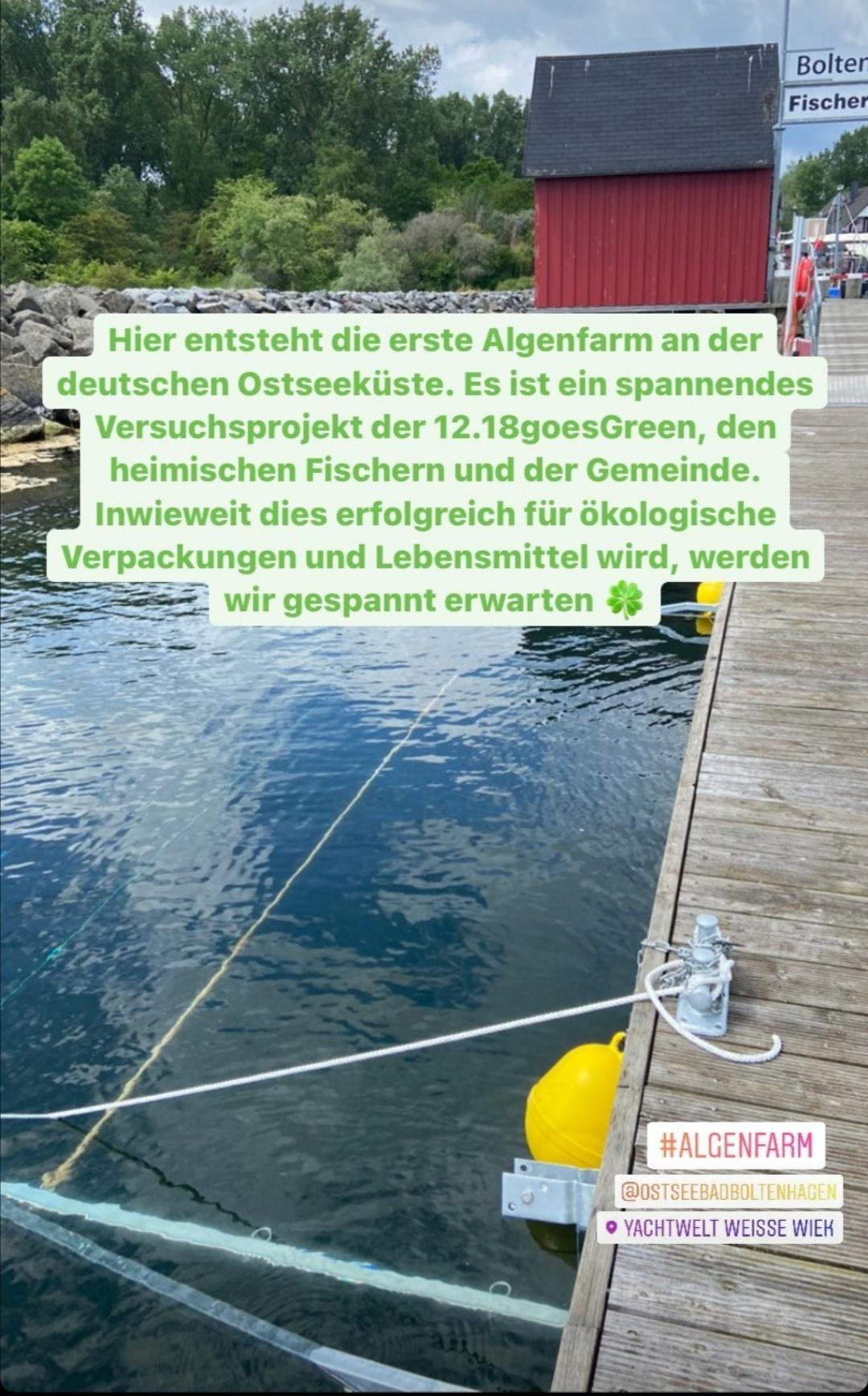 Erste Algenfarm an der deutschen Ostseeküste entsteht im Ostseebad Boltenhagen.