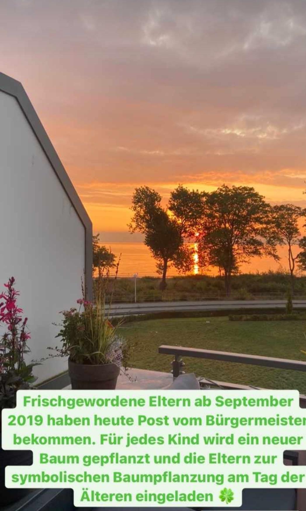 Für jedes, ab September 2019 in Boltenhagen geborene Kind, pflanzen wir einen neuen Baum in Boltenhagen.